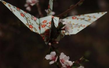 Image: The Kimono Gallery tumblr